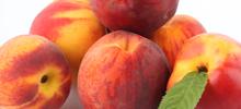 Peach-Apricot