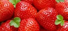Strawberry-220x100