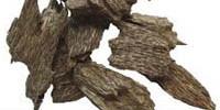 agarwood-200x100