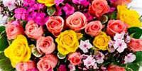 floral-200x100