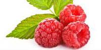 raspberry-200x100