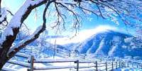 winter-200x100